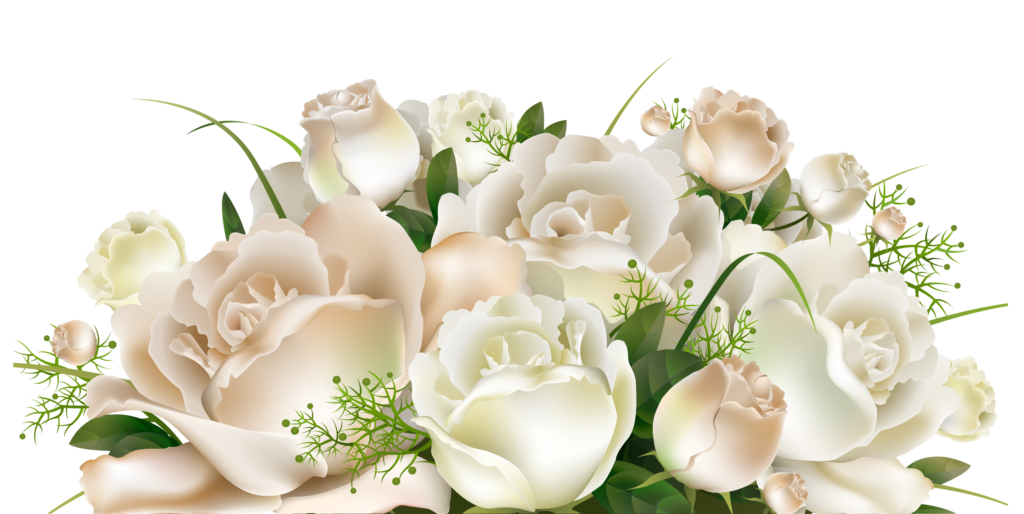 White Roses Decoration PNG Clipart Picture  Artistically