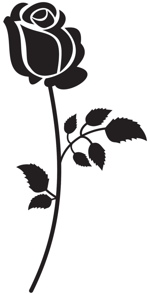 Rose Silhouette PNG Clip Art Image With images  Bird