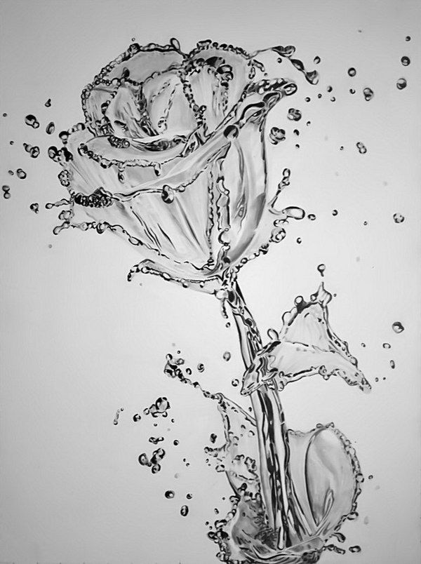 50 Amazing Pencil Drawings - Hative | 아티스트, 스케치, 그림 - Beautiful Black and White Roses