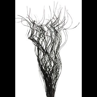 Wavy Ting with Black Glitter  4 oz  Vyn Flowers