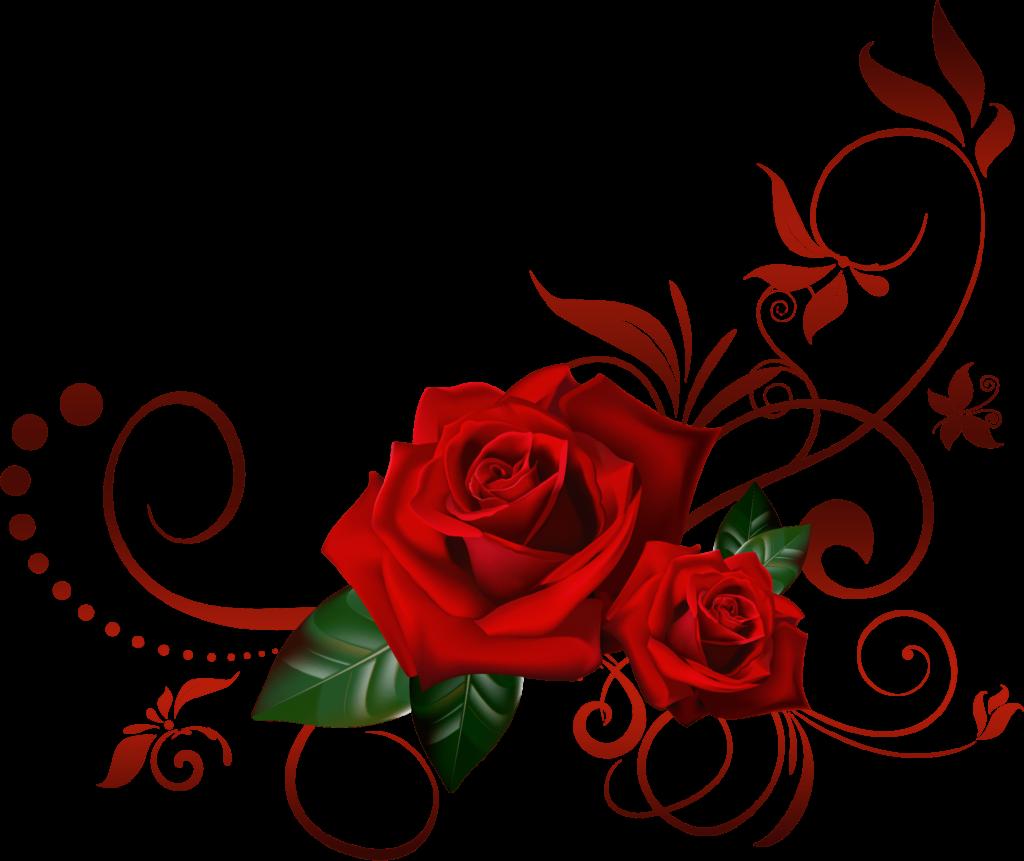 The Rose  Crown  Black Rose Border Png  Free