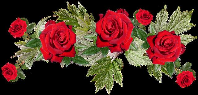 Free photo Anniversary Flower Arrangement Bouquet Roses