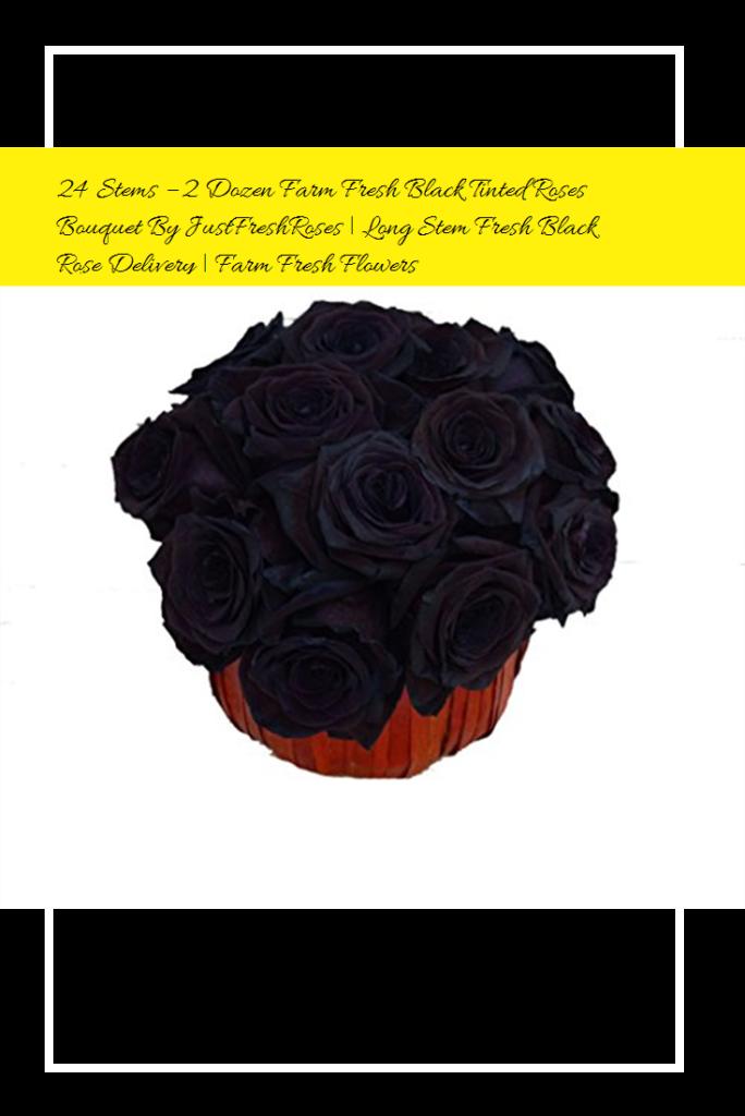 24 Stems  2 Dozen Farm Fresh Black Tinted Roses Bouquet