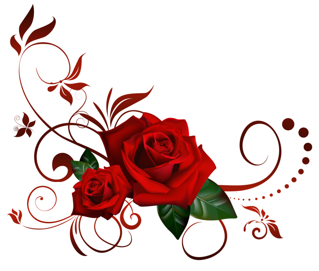 Rose png transparent 39864  Free Icons and PNG Backgrounds