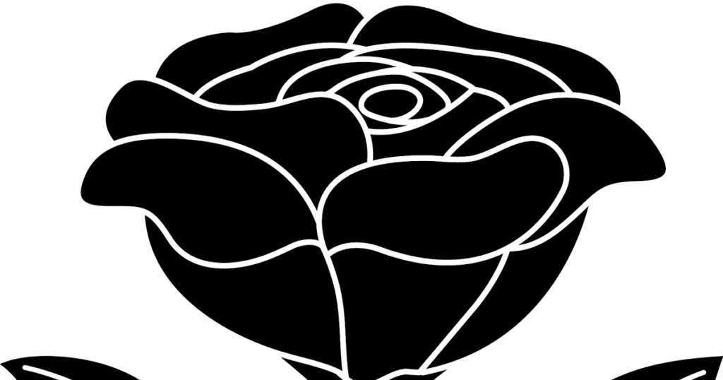 dongetrabi Black And White Rose With Stem Images
