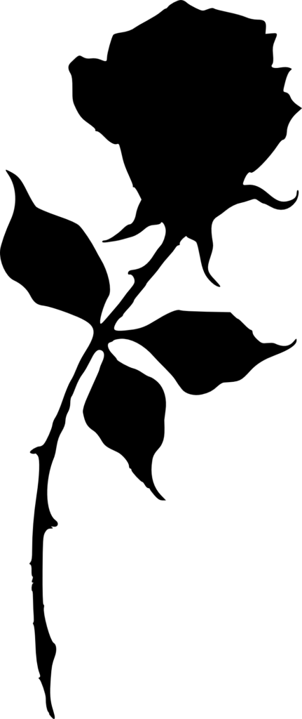 17 Rose Silhouette PNG Transparent  OnlyGFXcom
