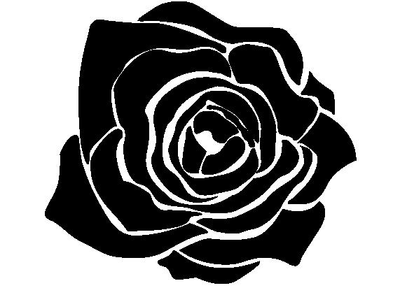 Black Rose Drawing Pics  Drawing Skill