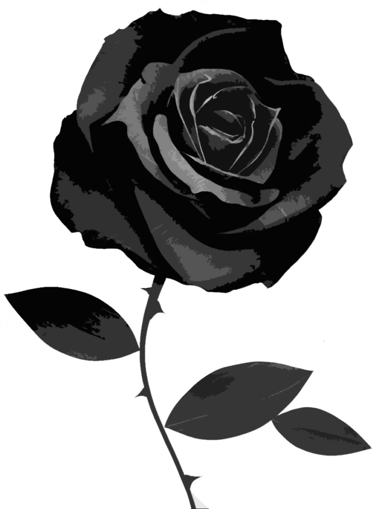 77 Black And White Rose Wallpaper on WallpaperSafari