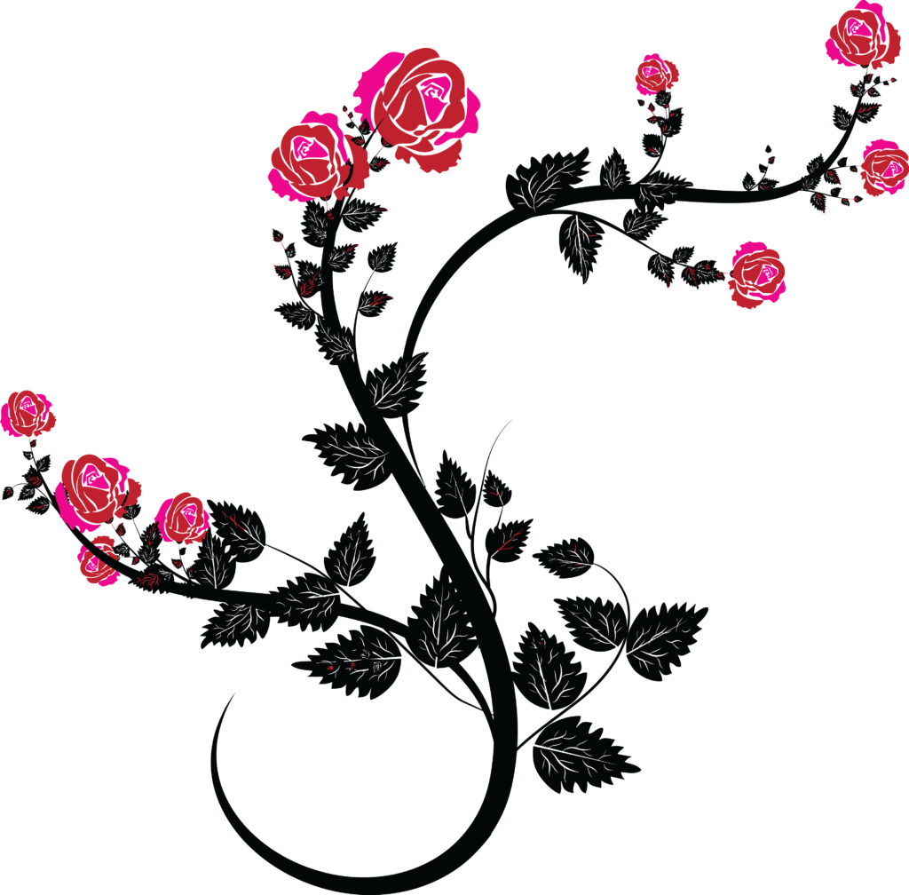 Free Clipart Of A Black and Pink Rose Design