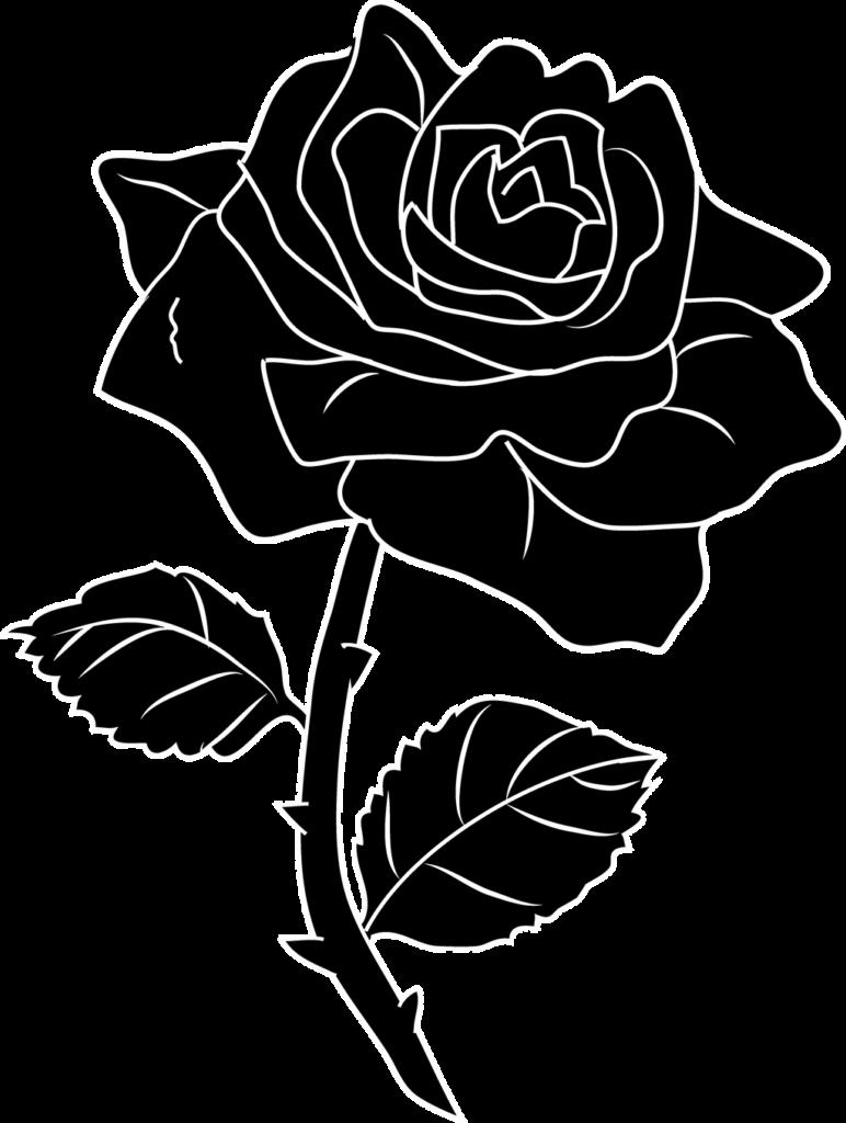 Black rose silhoutte by TaratheAlien on DeviantArt