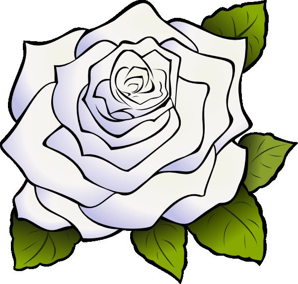 White Rose Clip Art at Clkercom  vector clip art online