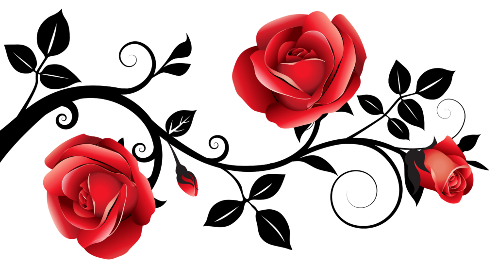 Red and Black Decorative Roses PNG Clipart Image  Rose