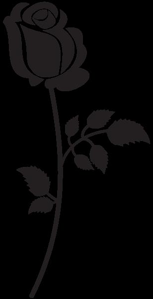 Rose Silhouette PNG Clip Art Image  Bird silhouette art