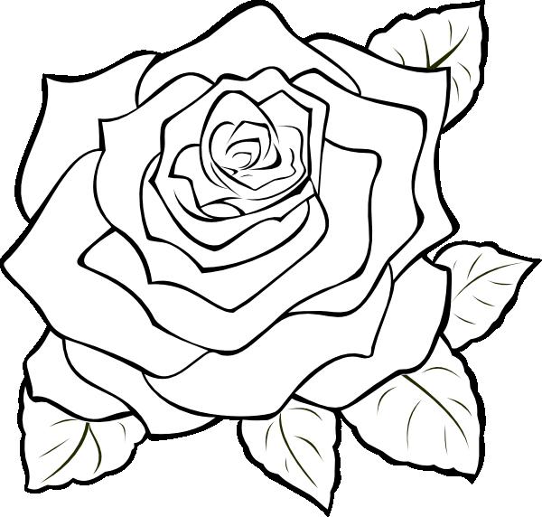 Uncoloured Rose Clip Art at Clkercom  vector clip art