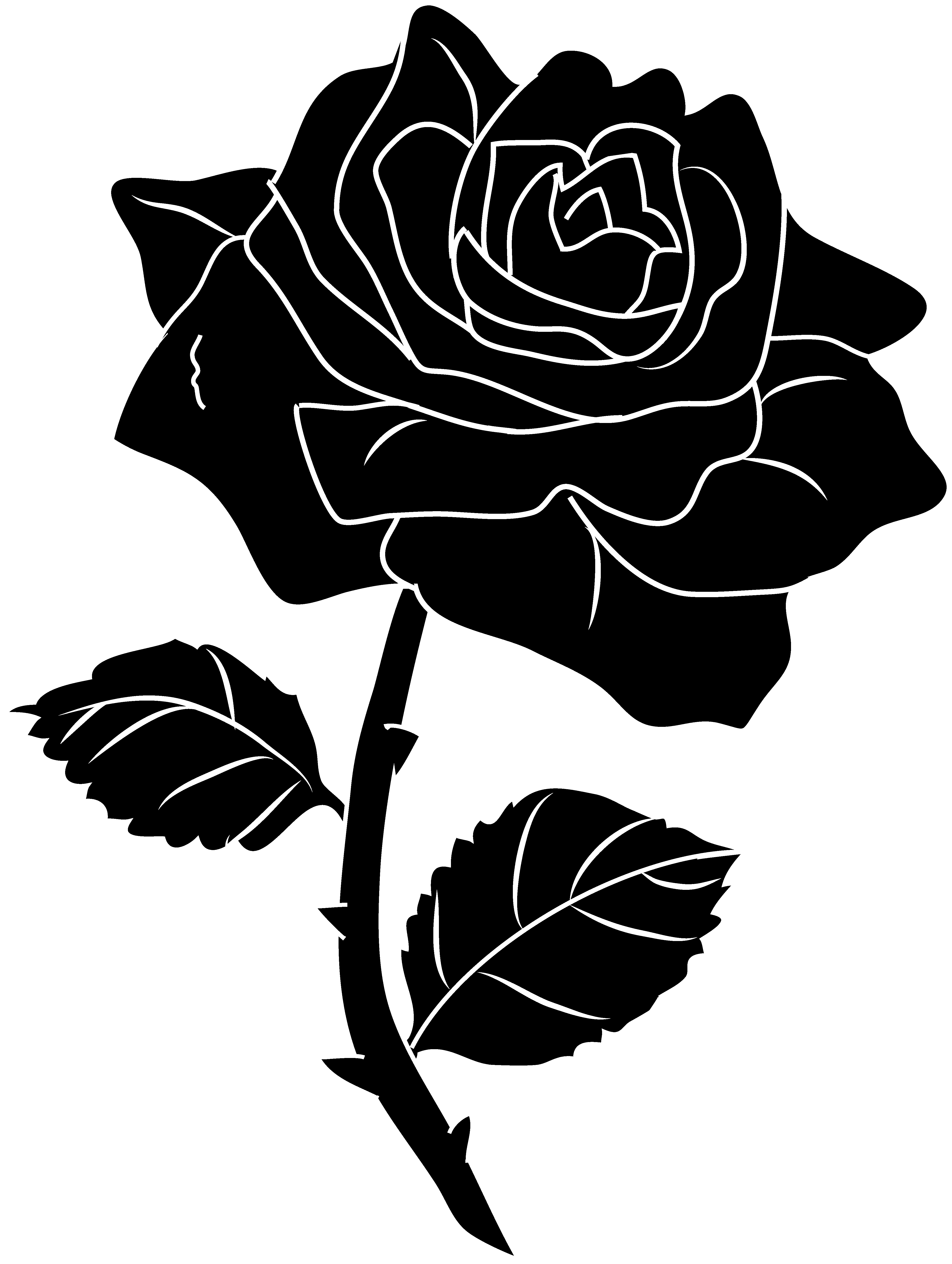 knumathise: Rose Clip Art Outline Images - Black and White Rose Print