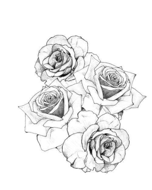 Rose Tattoo  Rose tattoo design Tattoos Rose tattoos