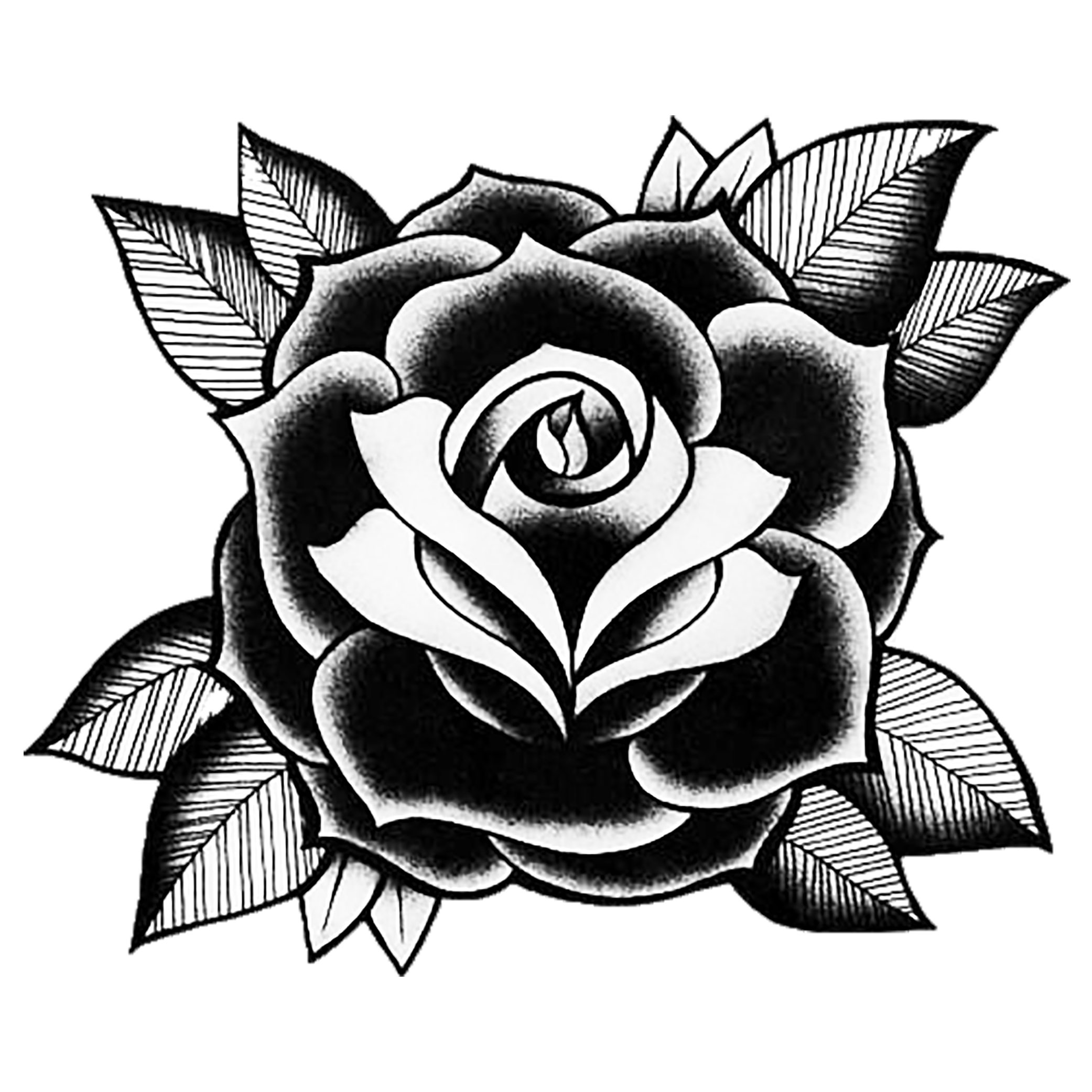Pin by Rajat Onethakur on Tattoo Designs | Traditional ... - Black and White Rose Tattoos