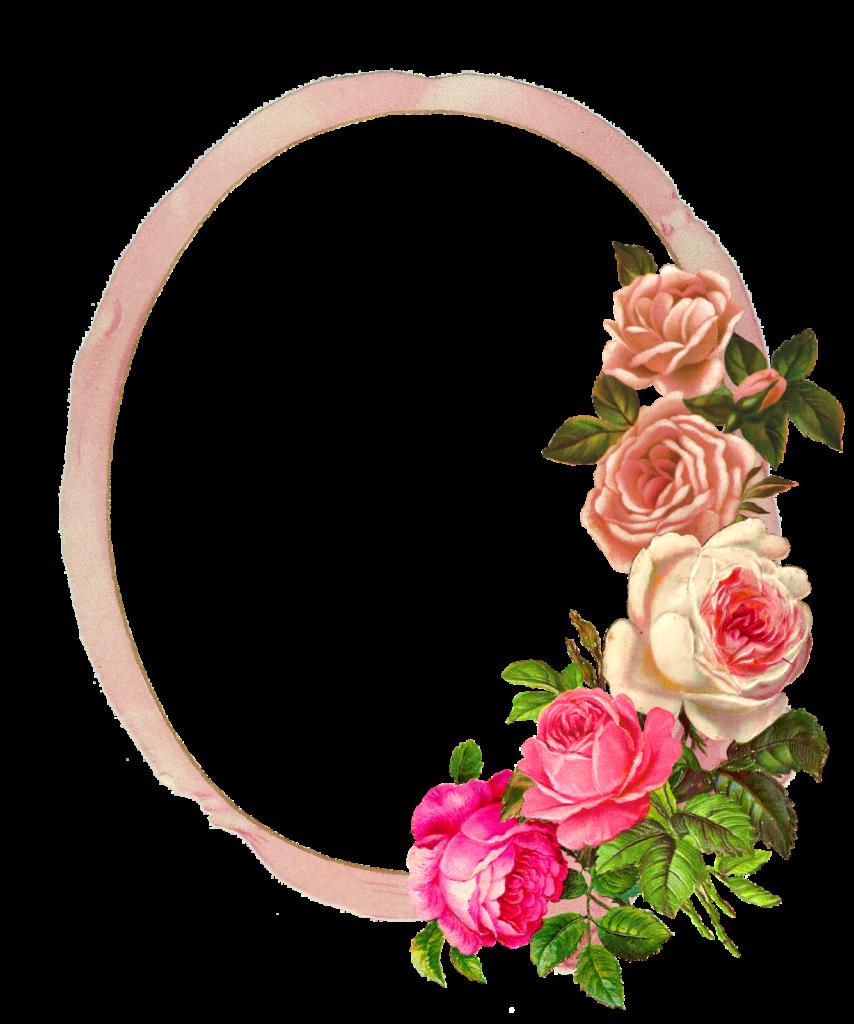 Rose frame png Rose frame png Transparent FREE for