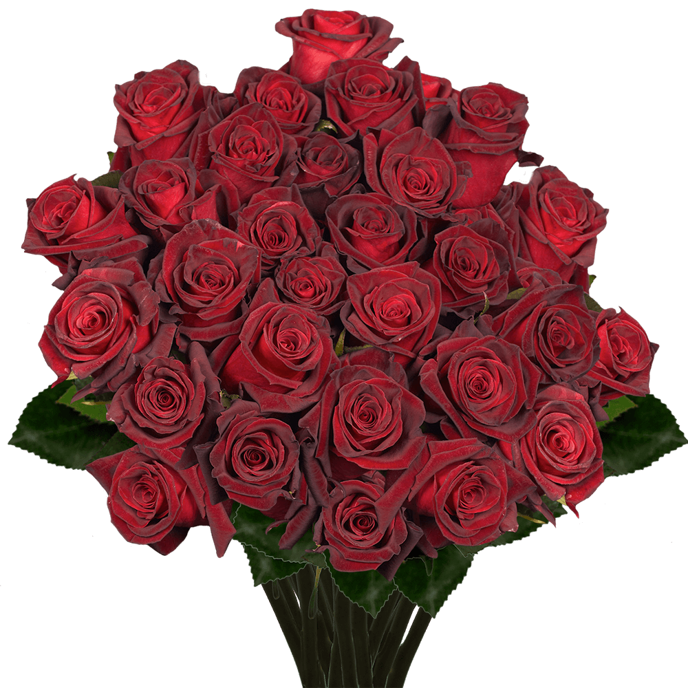 Long Stem Black Roses  GlobalRose