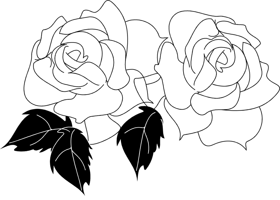Roses Outline  Free download on ClipArtMag
