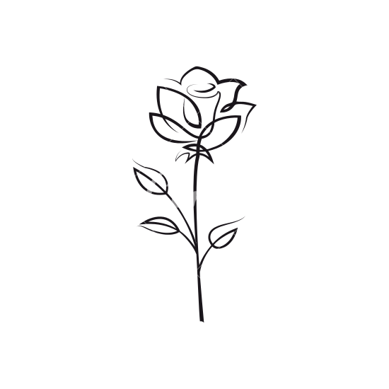 rose outline Rose flower outline icons by canva png