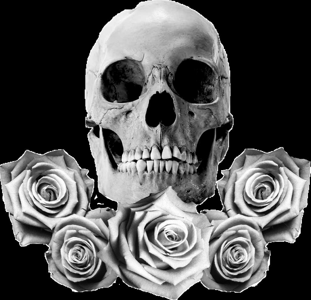 The Two Skulls  Skull with White Roses  Mens Premium T
