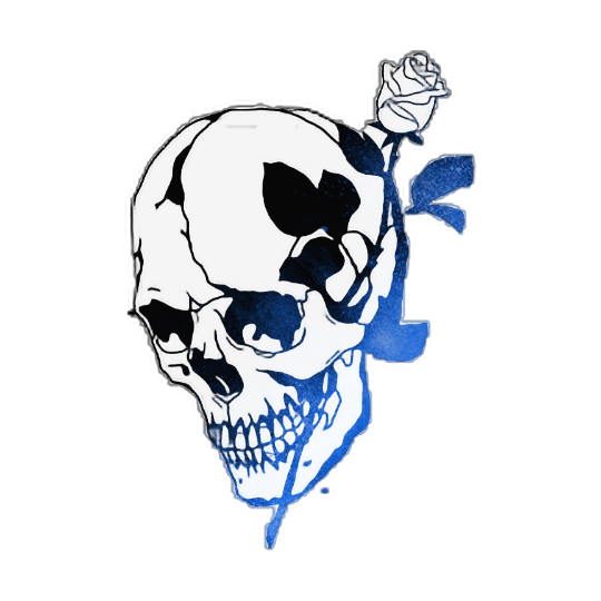 Skull Rose Drawing  Free download on ClipArtMag