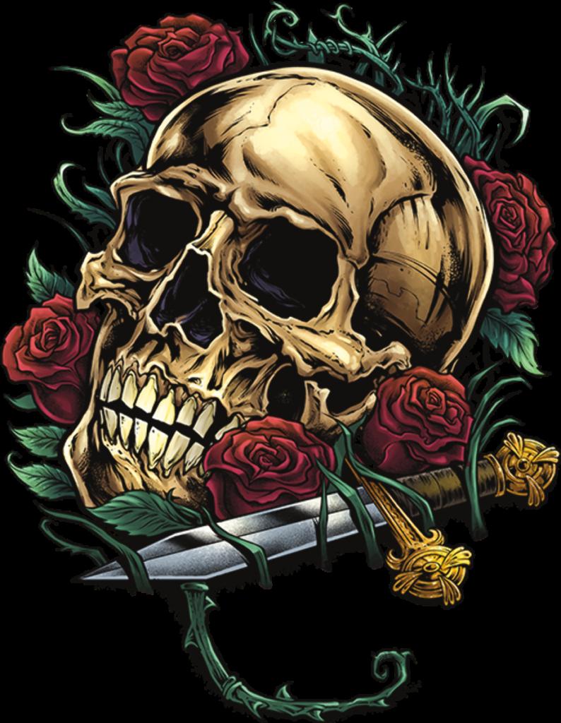 Download High Quality skull transparent rose Transparent