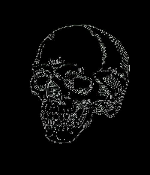 skull outline  Tumblr