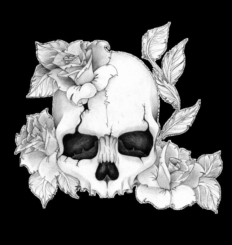 Skullnroses by Skrzynia on DeviantArt
