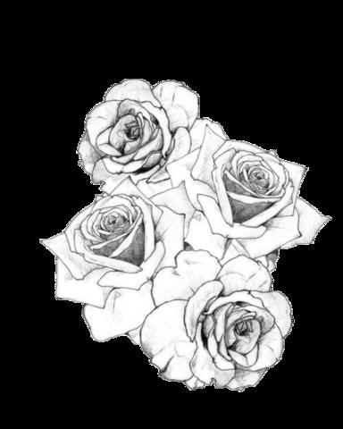 Image  Tumblr static black white roses tattoopng