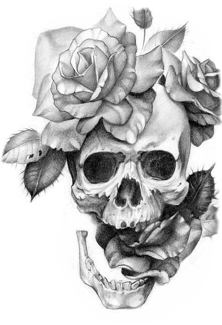 Khám phá nhãn dán mà bạn đã tạo với PicsArt  Skull rose