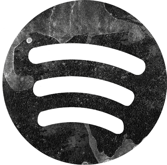 Spotify Icon Transparent Background at Vectorified.com ... - Cool Spotify Logo