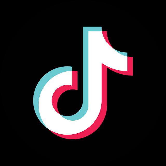 Tik Tok Logo Transparent in 2020  Instagram logo Youtube