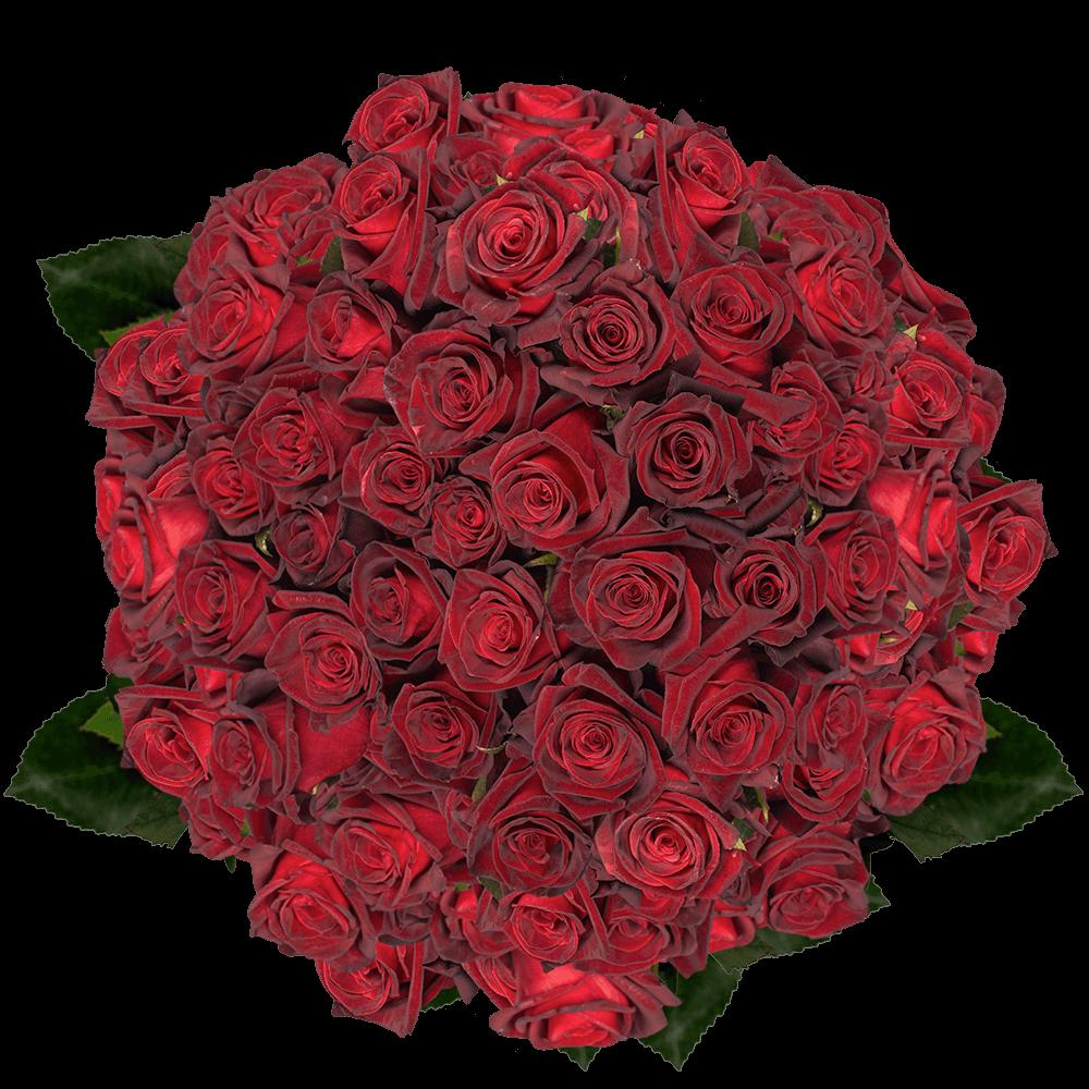 Best Black Roses  GlobalRose