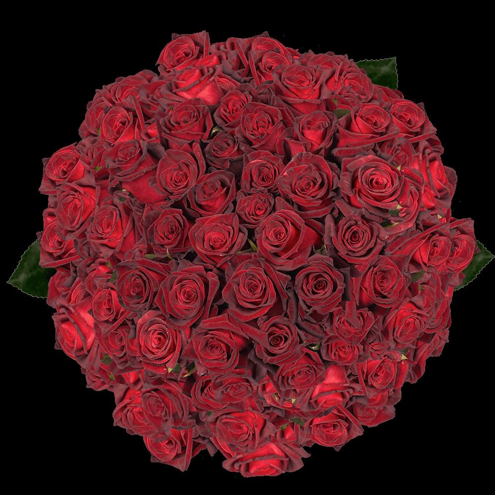 Black Roses Florist  GlobalRose