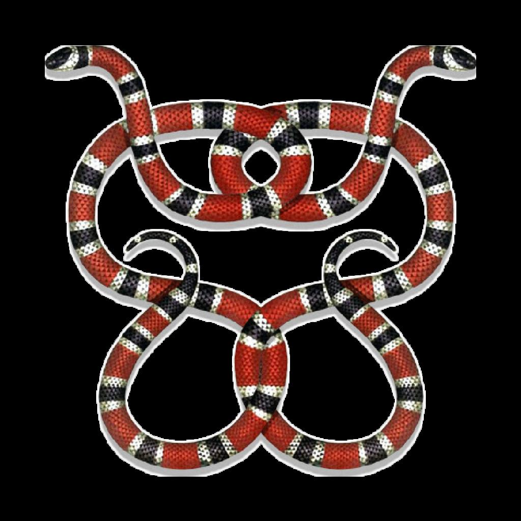 Gucci guccigang snakes guccilogo logo stickerpng