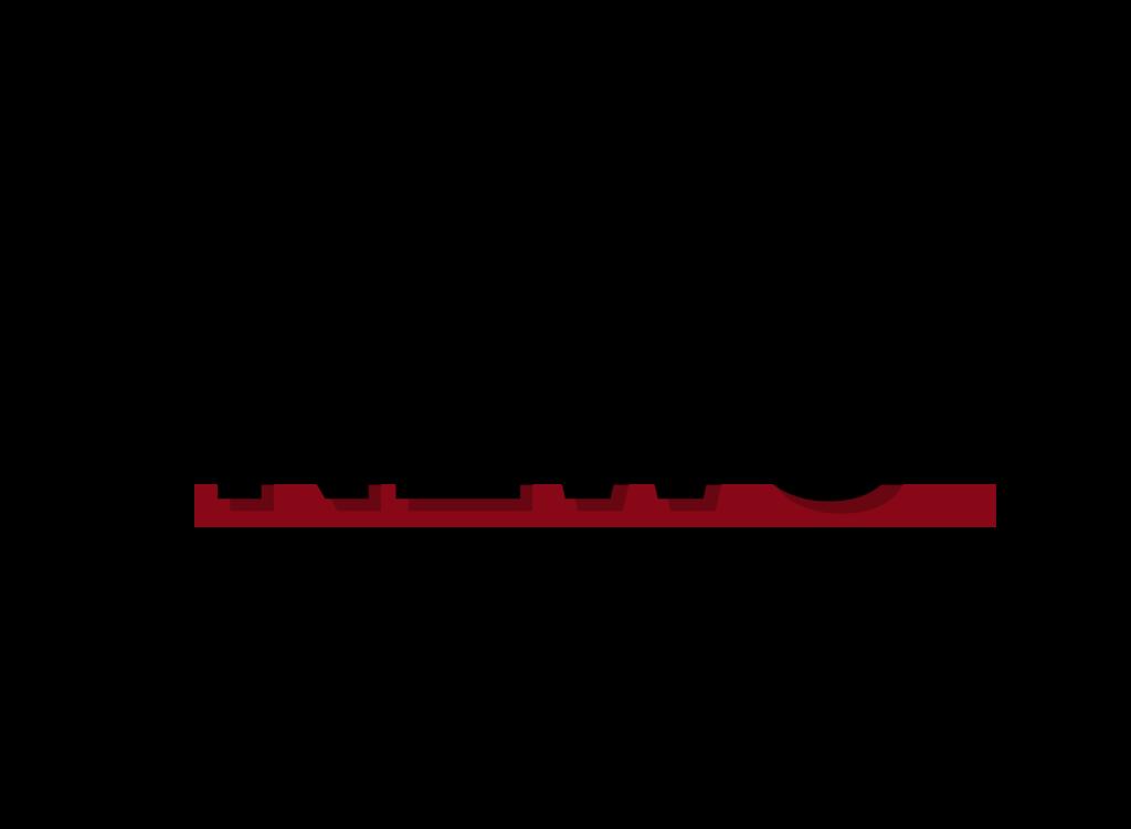 Tiktok Transparent Logo  hot tiktok 2020