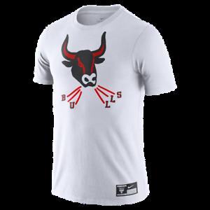 NEW Chicago Bulls Nike X Flip Pagowski Illustration