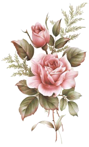 Pin on LOU floral cpcaart