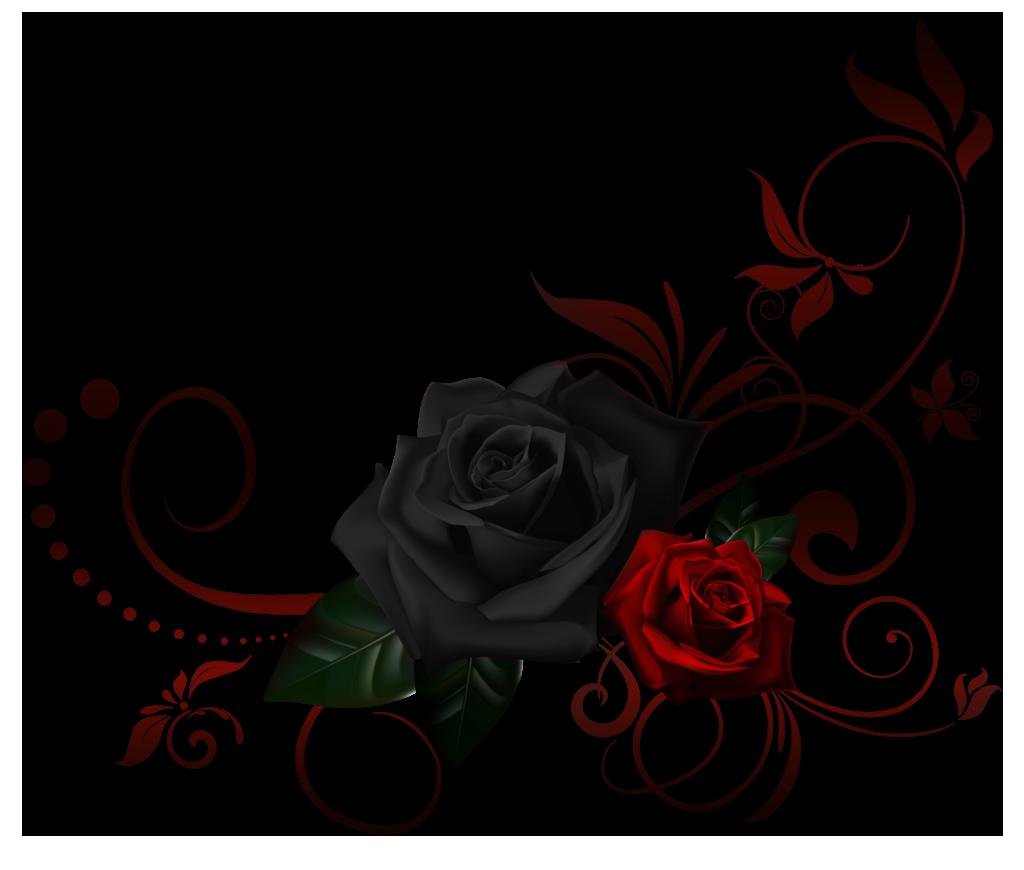 Image  548567918 2387796 redrosecornerborder9925981