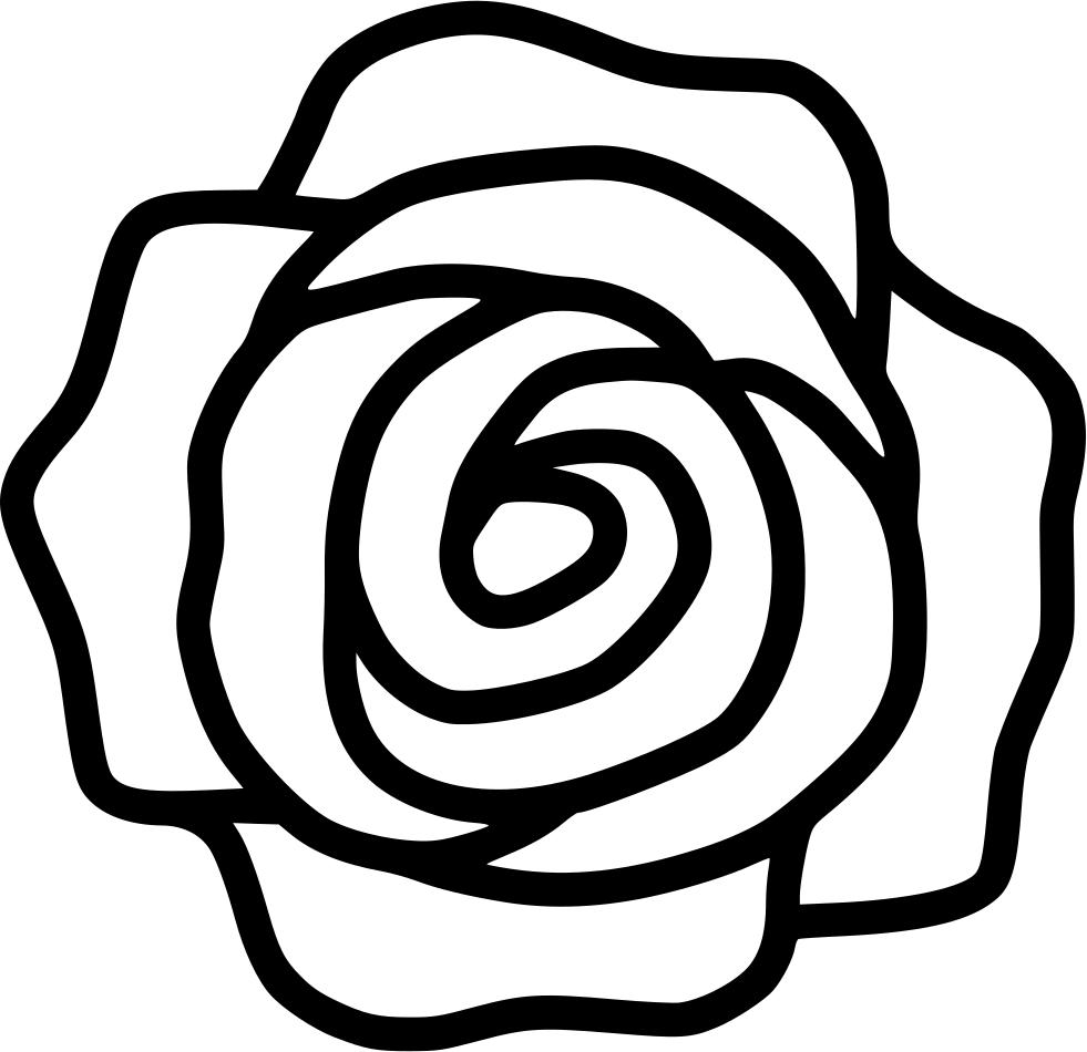 Rose Top Ol Svg Png Icon Free Download 499075