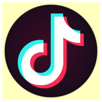 TikTok Free Followers in 2020  Free followers Free