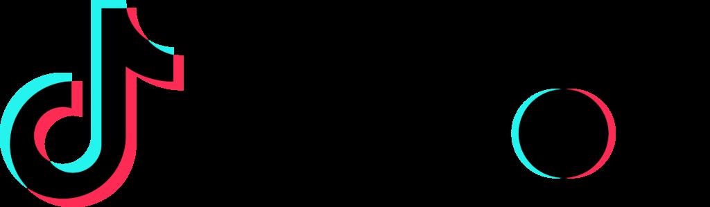 Tiktok Logo Png  hot tiktok 2020