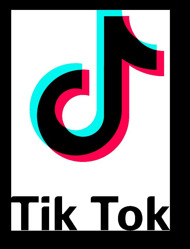 Tik Tok Logo With Font PNG Image  PurePNG  Free