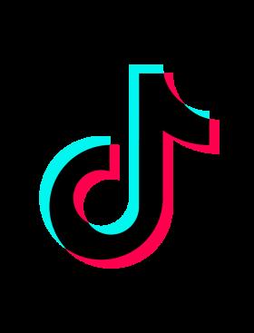 Tik Tok Logo PNG Image  PurePNG  Free transparent CC0