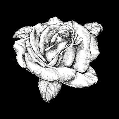 DELIGHTFUL CLUTTERby Rose 81411  82111