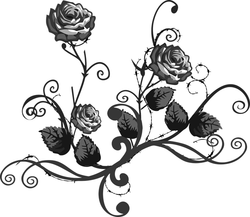 Rose Black White  Free vector graphic on Pixabay