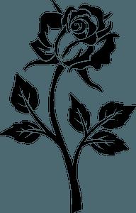 Vintage Rose clipart Free download transparent PNG