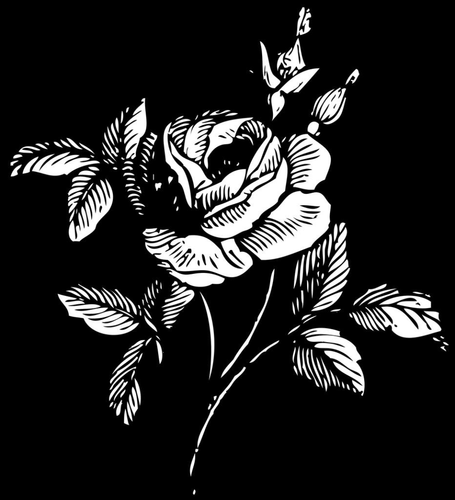Rose clipart minimalist Rose minimalist Transparent FREE
